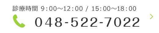 診療時間 9:00~12:00 / 14:30~18:30 048-522-7022